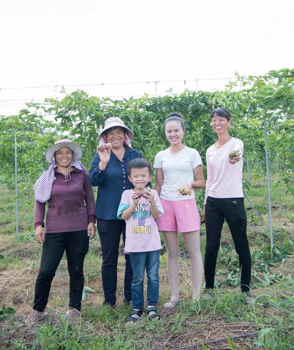 在淘寶直播的幫助下,尋烏縣百香果的關注度及實際需求有所增加,為當地果農帶來脫貧的曙光。