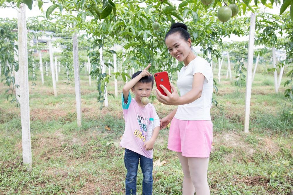 「百香姐」潘秋霞每日都會跟兒子結伴走入百香果園,透過直播平台介紹果園及農作物的發展情況。
