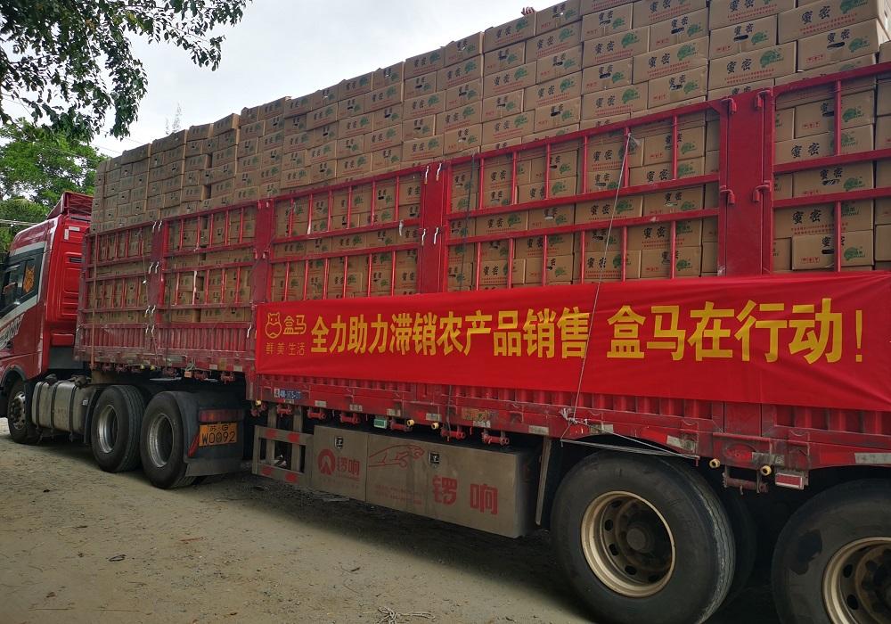 盒馬聯合中國各地政府、區域合作夥伴發起「愛心助農行動」,緩解農產品滯銷情況。