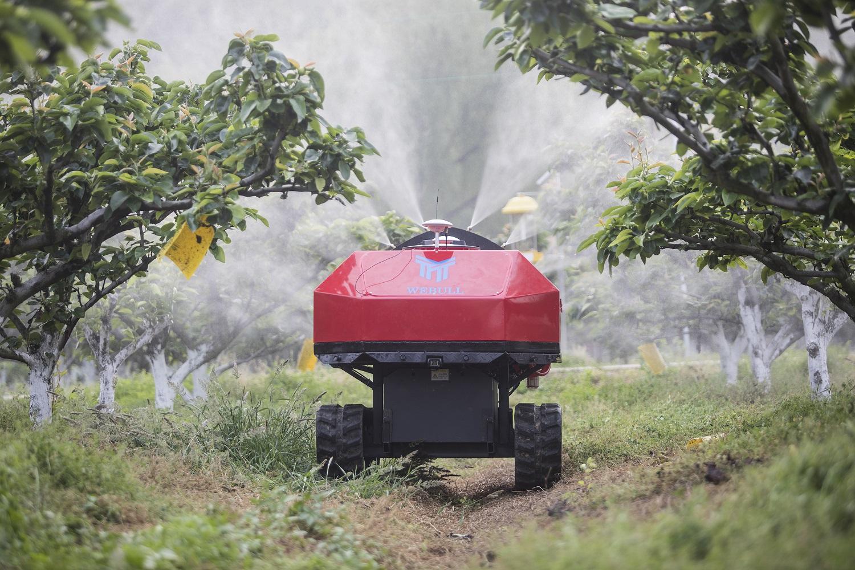 阿里巴巴翠冠梨數字農業基地引入科技化管理,例如圖中的水肥一體化灌溉設施,改善農民工作量及農田種植管理工序。