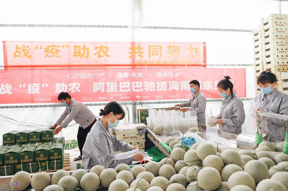 阿里巴巴於今年2月發起「愛心助農計畫」,為疫情期間中國各地滯銷的農產品開拓銷路。